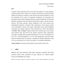 seyran-akay.pdf